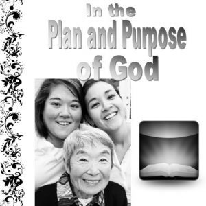 women-in-the-plan-and-purpose